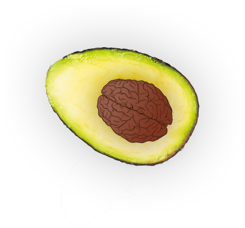 Avocado-Brain-transparent
